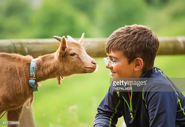 kid with baby goat