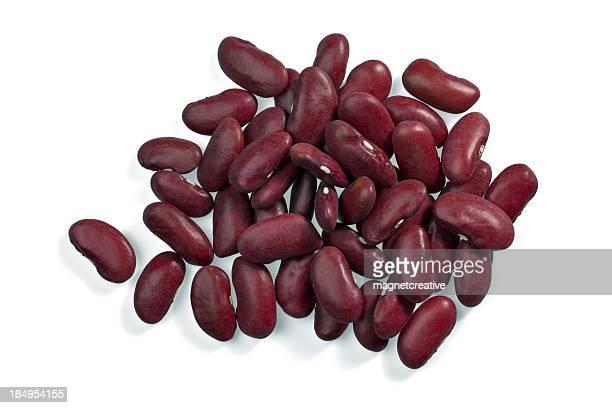 腎臓、乾燥豆