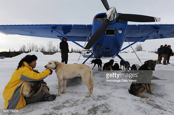 Kidron Flynn of Minnesota sits with dropped dogs getting ready to be loaded in an Iditarod Air Force plane at Nikolai Alaska airport on Wednesday...