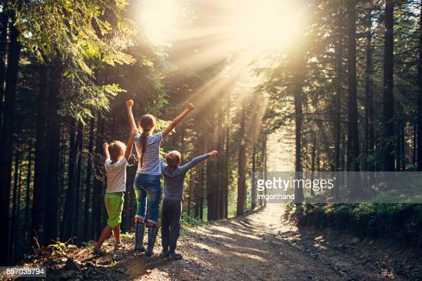kids admiring glorious sun rays in forest after rain - lane sisters stock photos and pictures