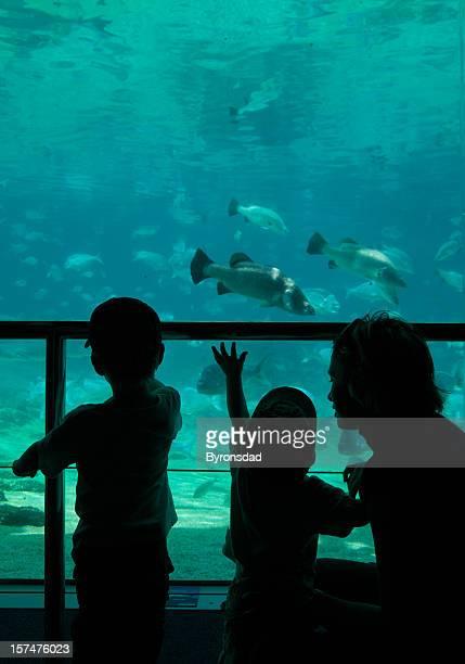 Kids and Aquarium