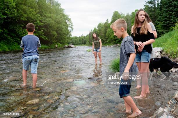 "kids and dog playing in river in summer nature. - ""martine doucet"" or martinedoucet stock pictures, royalty-free photos & images"