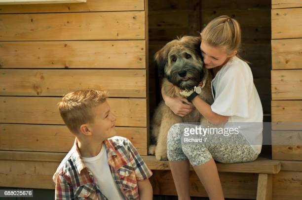 kids and their wheaten puppy - soft coated wheaten terrier stock photos and pictures