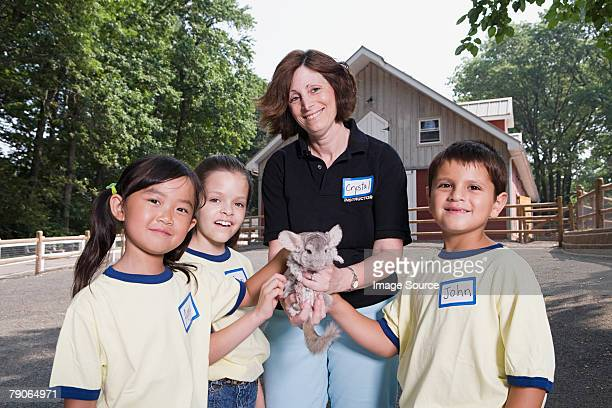 kids and zoo keeper with chinchilla - zoo keeper stock pictures, royalty-free photos & images
