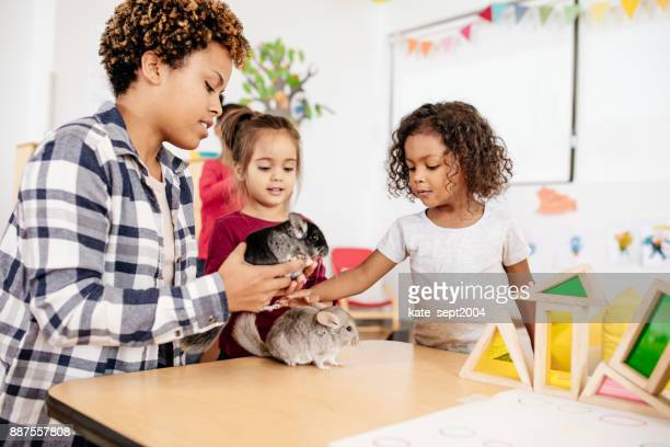 KIds are learning about domestic animals