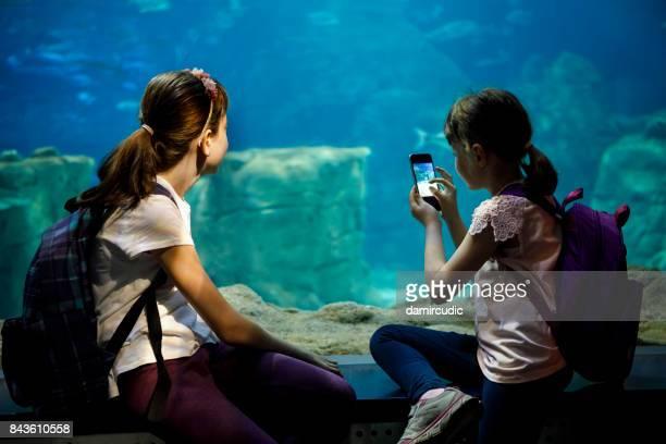 Enfants de capturer des photos de poissons dans l'aquarium
