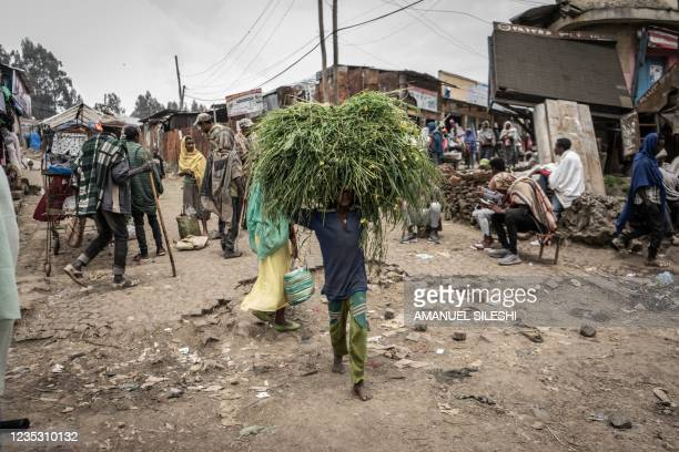Kids carries a load of grass on his head in Amba Giorgis, 40 kilometers Northeast of the city of Gondar, Ethiopia, on September 17, 2021.