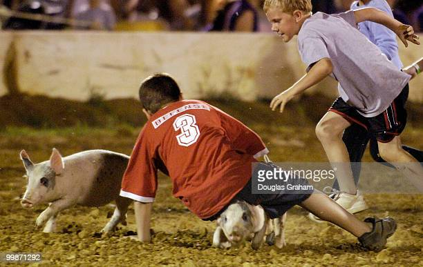 Kids chase lose pigs in the 8 to 12 year old division during the pig scrambles during the 51st Annual Clarke County Fair.