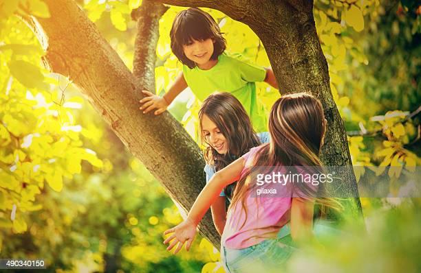 Kinder Klettern einen Baum.