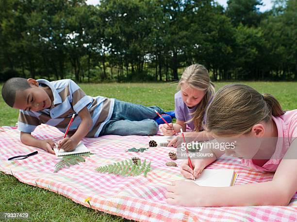 ragazzi disegno sul campo viaggio - nature reserve foto e immagini stock