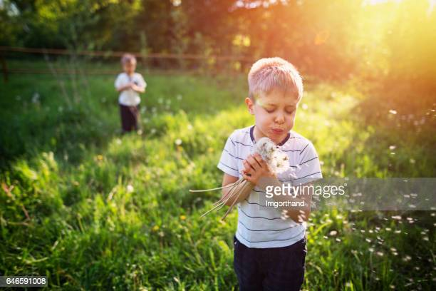Kids enjoying spring dandelions