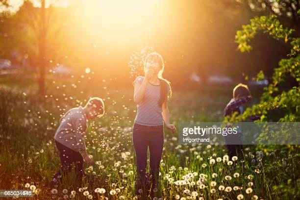 Kinder genießen Frühjahr Löwenzahn