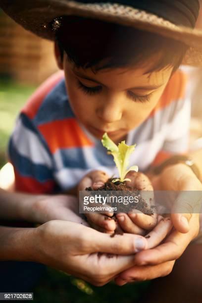 Les enfants ont une curiosité naturelle pour la nature