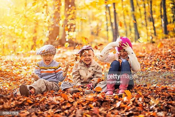 お子様に楽しいにある秋の森