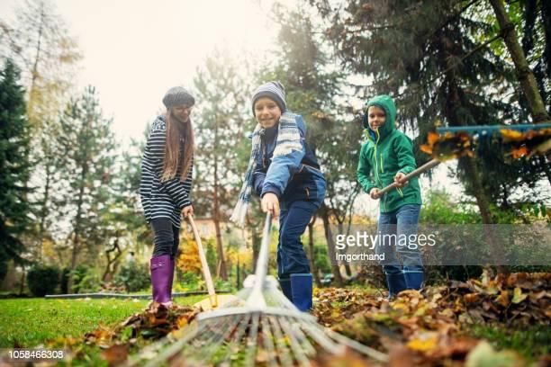 kids having fun raking autumn leaves - rake stock pictures, royalty-free photos & images