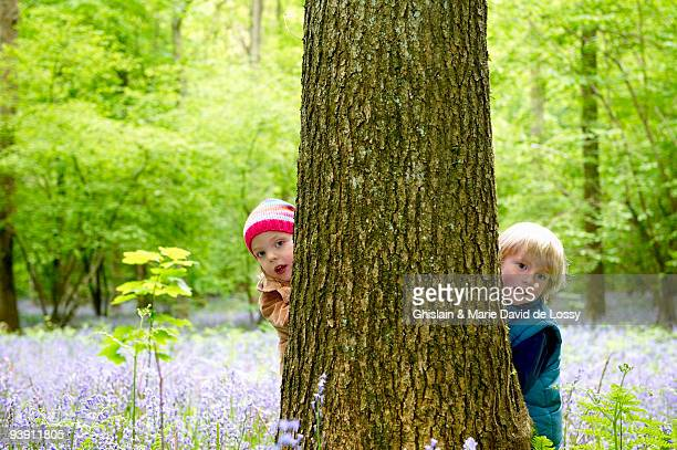 Kids hiding behind a tree