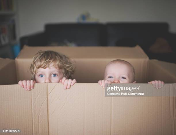 kids in a cardboard box - peeking stock pictures, royalty-free photos & images