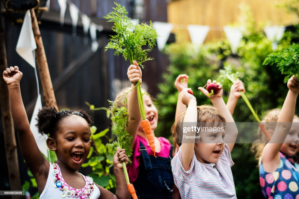 Kids in a vegetable garden with carrot : Stock Photo