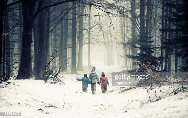kids in misty forest - lane sisters stock photos and pictures