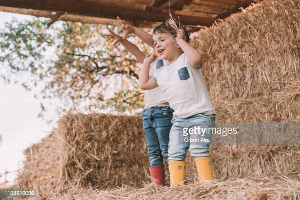 los niños en granero de paja - escena no urbana fotografías e imágenes de stock