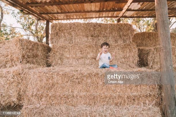 los niños en granero de paja - actividad de agricultura fotografías e imágenes de stock