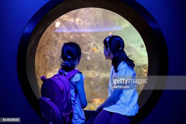 Enfants qui cherchent à pêcher dans un énorme aquarium