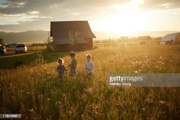 kids play in field - ländliches motiv stock-fotos und bilder