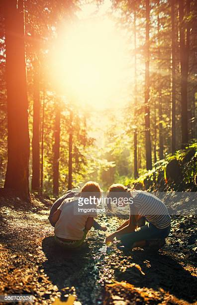 kids playing in a small stream on forest path - vertical stock pictures, royalty-free photos & images