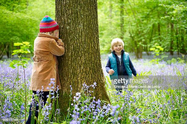 Kids playing in the forest