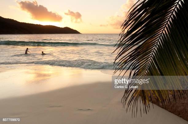 Kids playing on white sand beach at sunset