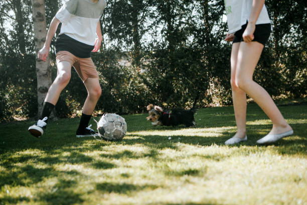 kids playing soccer on back yard in a sunny day.Low section
