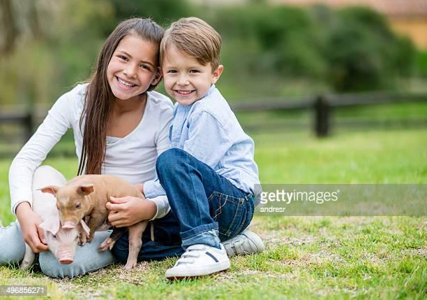 Los niños juegan con cerdos