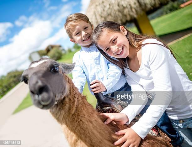 Kinder Reiten einen Lama