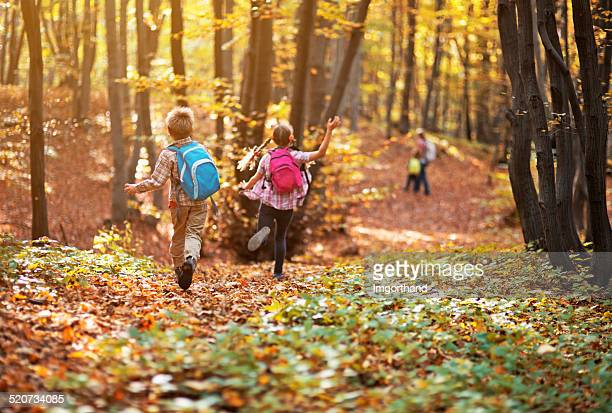 kids running in autumn beech forest - lane sisters stock photos and pictures