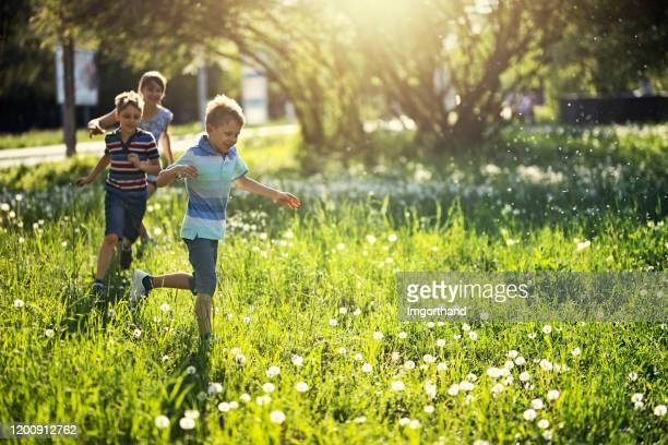 タンポポでいっぱいの草原で走る子供たち - 鬼ごっこ ストックフォトと画像