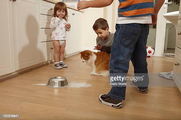 Kids spill the cat's milk