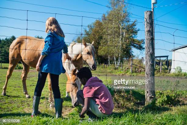 Kids stroking horses nose behind a fence.