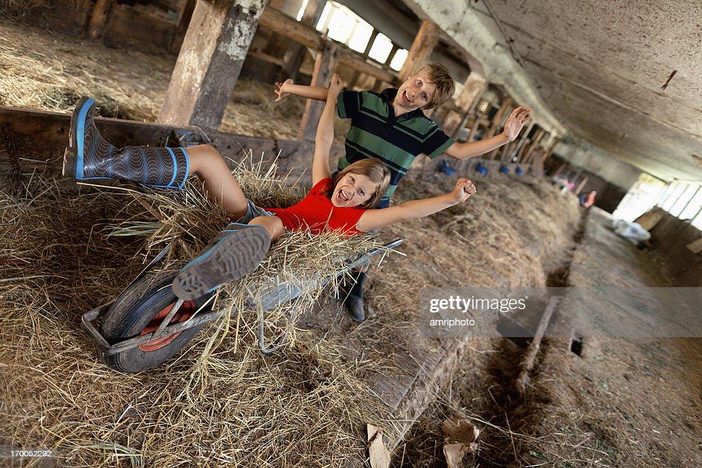 kids summer holiday on farm : Stock Photo