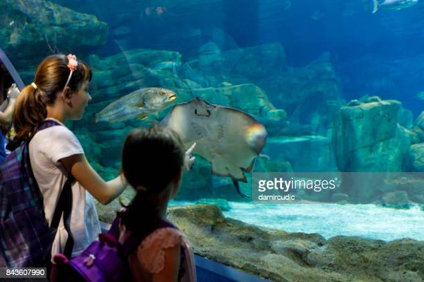 Enfants visitant énorme aquarium