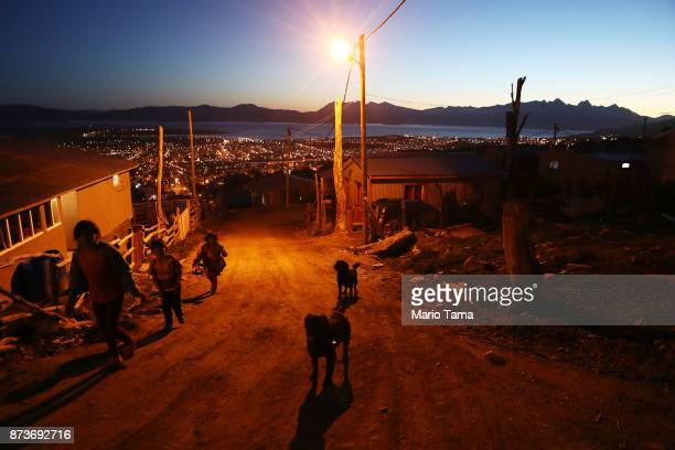 Kids walk past dogs in an informal mountainside community whose residents depend on runoff water from the receding Martial Glacier on November 5 2017...