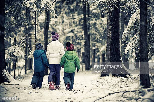 kids walking in winter forest - lane sisters stock photos and pictures