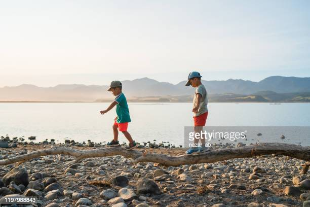 kids walking on log trying to balance. - new zealand stock pictures, royalty-free photos & images