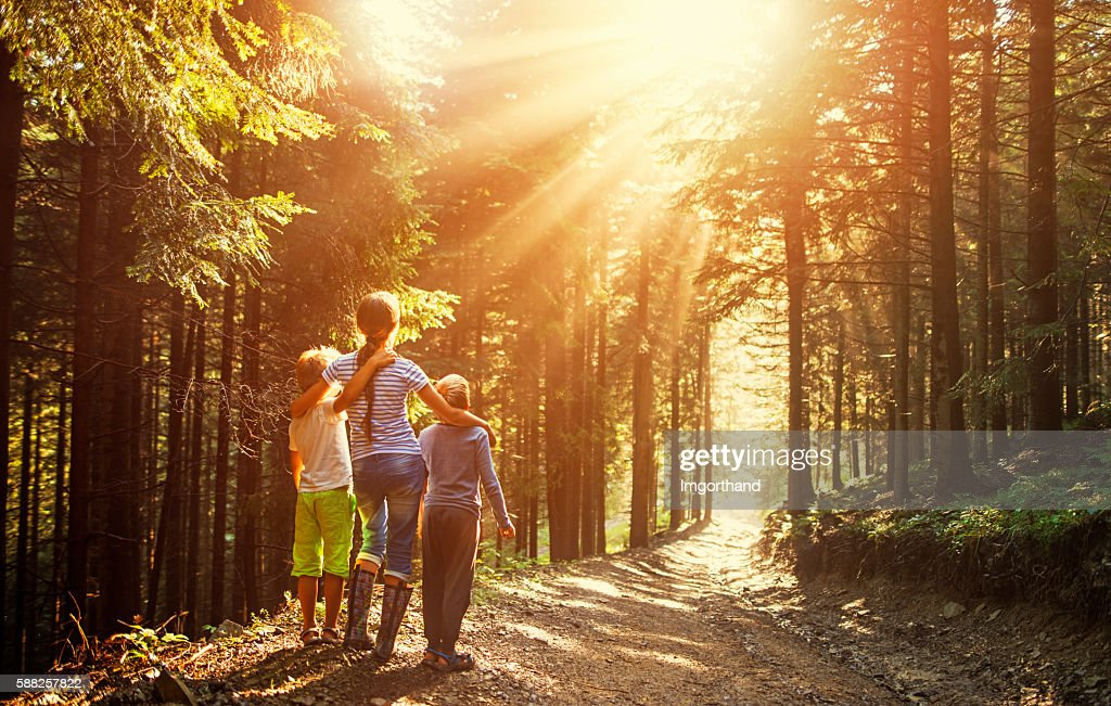 Kids watching beautiful sun beams in forest : Stock Photo