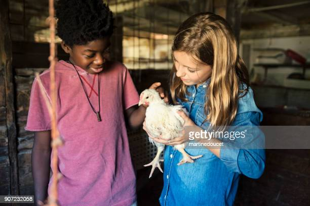 Kids with a baby turkey in an old barn.