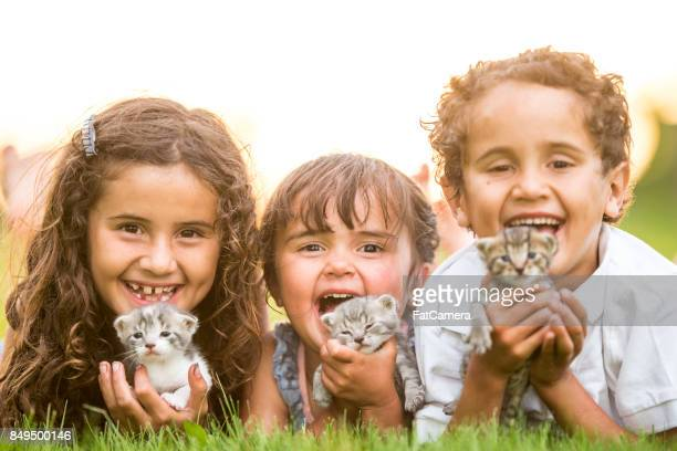 kids with kittens - gattini appena nati foto e immagini stock