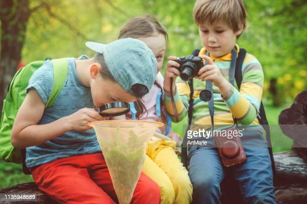 miúdos com lupa que descobrem os mistérios da natureza - exploração - fotografias e filmes do acervo