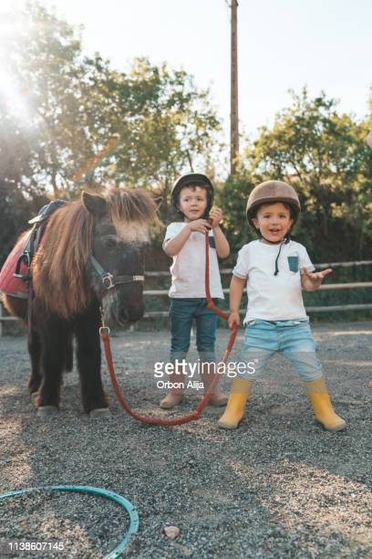 kids with pony - pony stock pictures, royalty-free photos & images