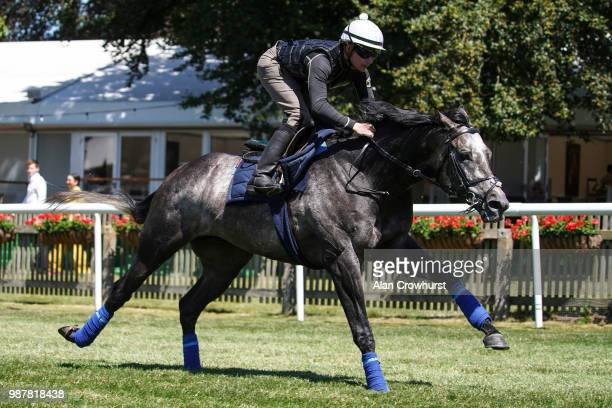 Kieran ONeill riding Roaring Lion in a gallop before racing at Newmarket Racecourse on June 30 2018 in Newmarket United Kingdom
