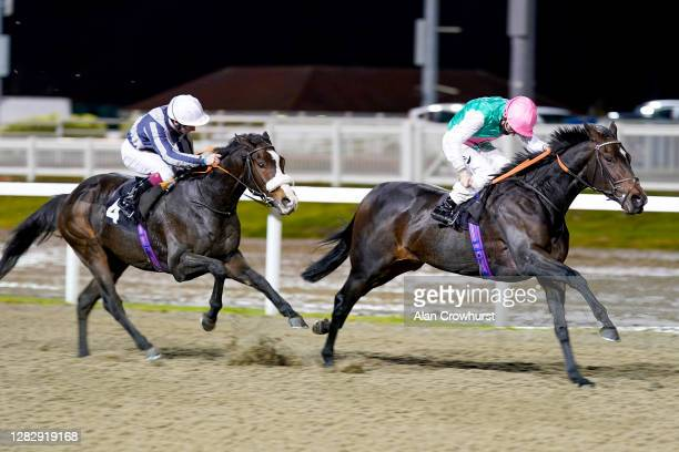 Kieran Shoemark riding At Ease win The Support The Injured Jockeys Fund Novice Stakes at Chelmsford City Racecourse on October 29, 2020 in...