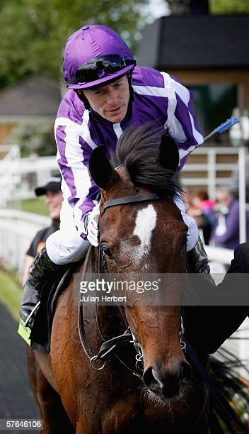 Kieren Fallon and Septimus return after landing The totesport Dante Stakes run at York Racecourse on May 18 2006 in York England